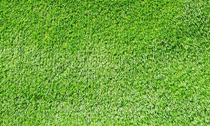 Hyperli | Artificial Grass Roll - 25M x 2M from R3499